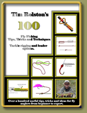 100 Tips and Techniques eBook